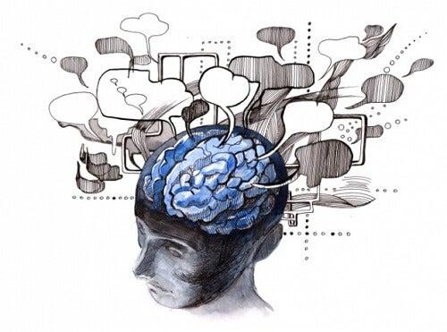 무엇이 지능에 영향을 미칠까?
