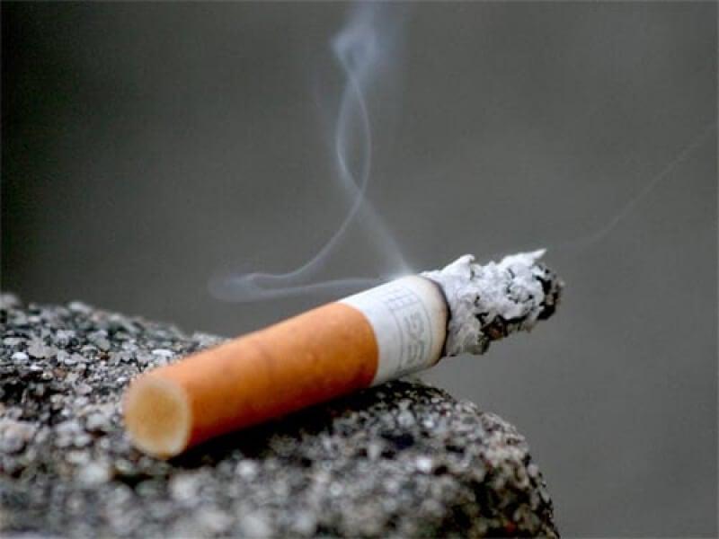 지능에 영향을 니코틴