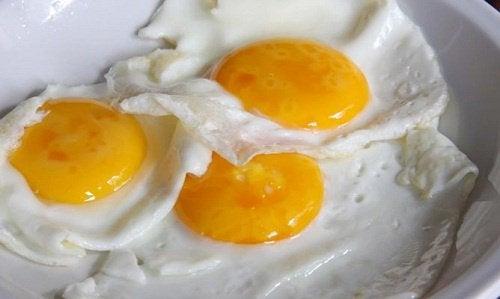 달걀의 영양학적 사실