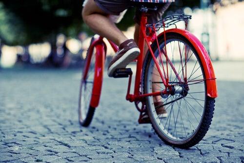 정맥류 개선에 자전거 타기