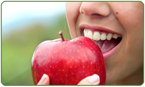 포만감을 주는 식품 12가지