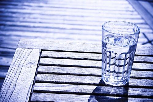 하루에 물 2리터씩 마시기