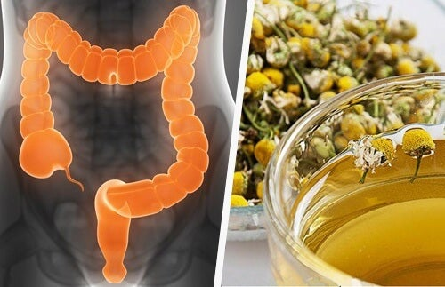 Naturally-cleanse-the-colon