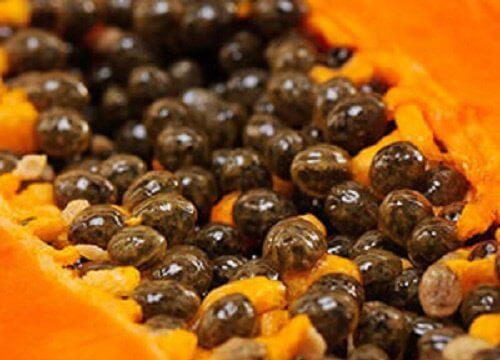 papaya-seeds