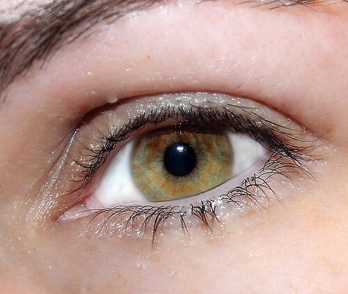 자연스럽게 빛나는 눈을 만드는 비결