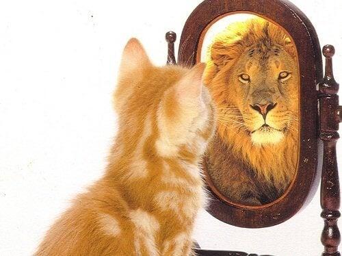 우울증에 대해 자존감이 매우 중요하다
