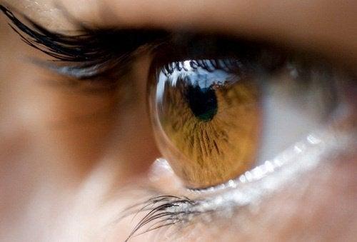 3-vision-problems