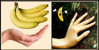 건강식품 바나나