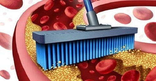 동맥과 혈관을 깨끗하게 해주는 10가지 식품