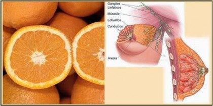 건강식품 오렌지