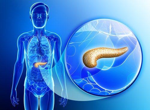 자연적으로 췌장을 해독하는 방법