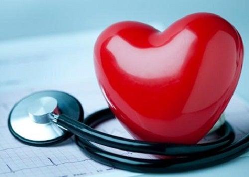 귀리의 놀라운 효능 10가지 심장 보호