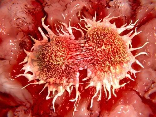 2-cancer-cells