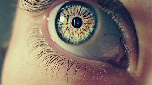눈동자에 관한 신기한 사실 7가지