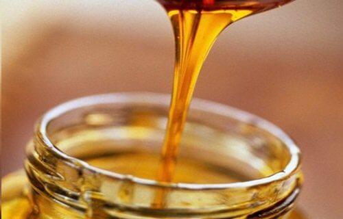 천연 항생제 천연 꿀