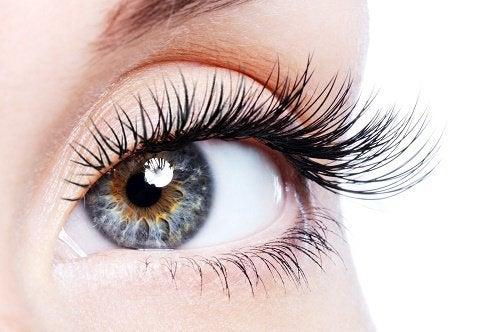 1-eyelashes