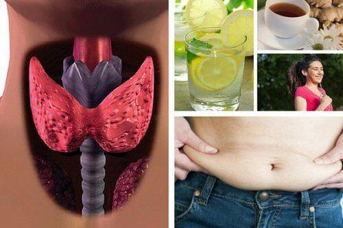 갑상선기능저하증이 있을 때 체중 감량을 하는 법