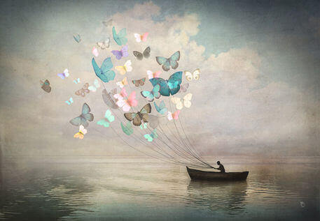 4-butterflies-and-boat