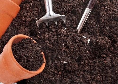 4-soil