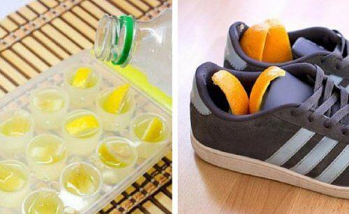 감귤류 과일의 껍질을 활용하는 방법 6가지