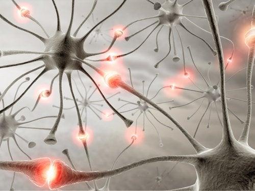 우리가 걸을 때 뇌에는 어떤 변화가 생길까?