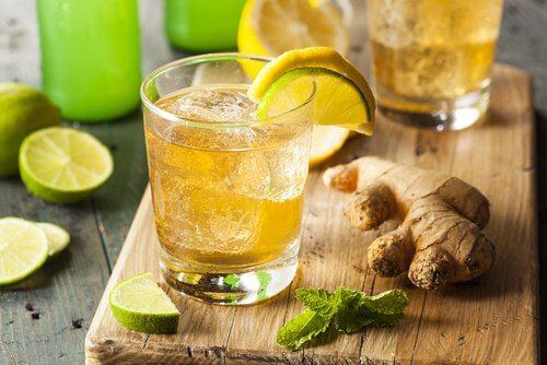 편두통을 해소하는 레몬 생강 천연 치료제