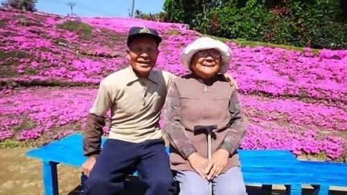 시력을 잃은 아내를 위해 1000송이 꽃을 심은 남자