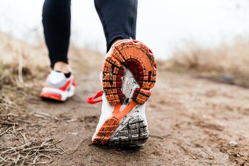 불면증 치료에 산책