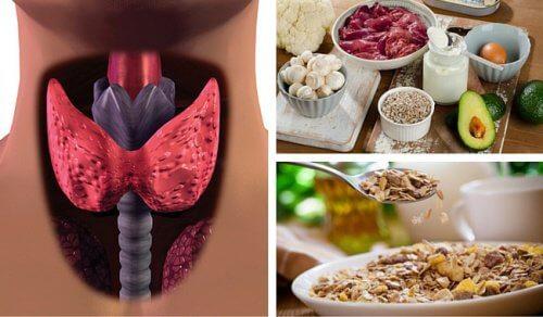 갑상선 기능 저하증을 위한 신진대사 촉진 음식