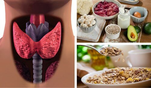 1-hypothyroidism-and-food