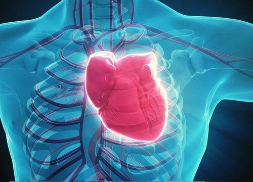 부정맥의 증상