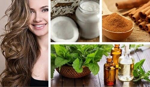 머리카락의 성장을 촉진하는 코코넛, 민트, 계피 치료제