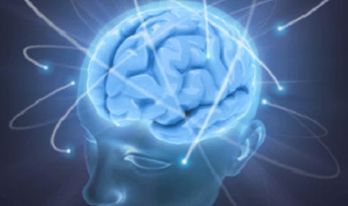 추락하는 꿈을 뇌