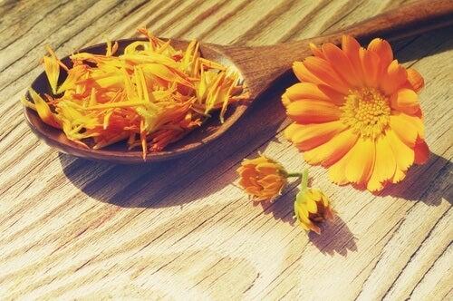 튼살을 줄여 주는 놀라운 치료제 6가지
