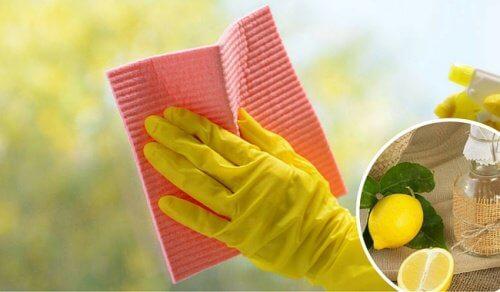 집에서 유리 표면과 창문을 청소하는 비법
