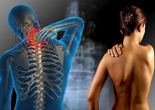 글루텐과 섬유근육통이 서로 연관이 있을까?