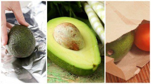 단숨에 아보카도를 익혀서 먹는 5가지 비법