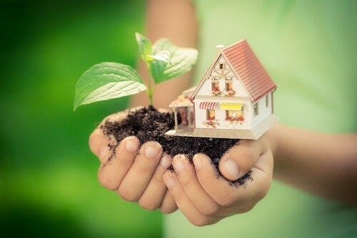 organic-home-management