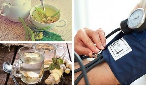 저혈압 완화를 위한 6가지 자연 요법