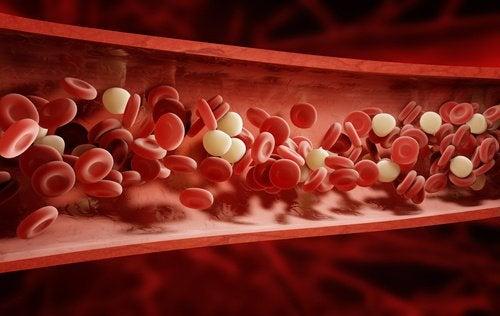 bloodstream-1