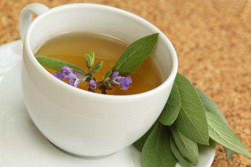 sage-tea-1