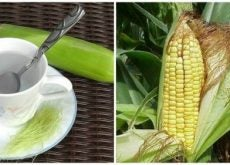 1-benefits-of-corn-silks