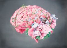 1-brain-and-flowers