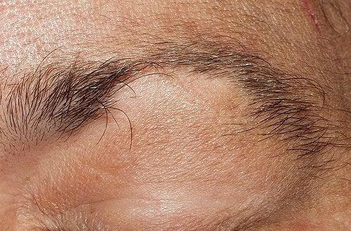 1-eyebrow