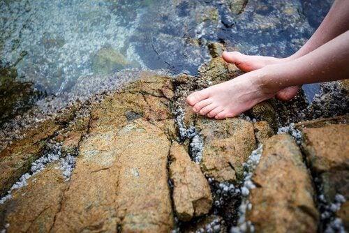 2-foot-in-stream