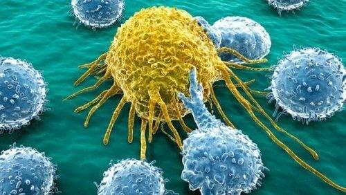 4-cancer-cells