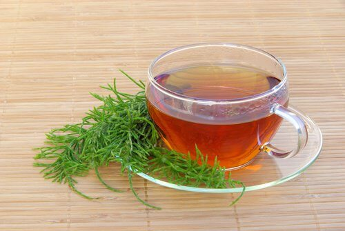 5-horsetail-tea