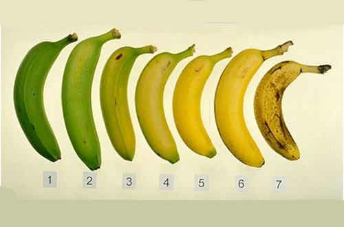바나나를 먹는 가장 좋은 방법: 익혀서? 덜 익혀서?