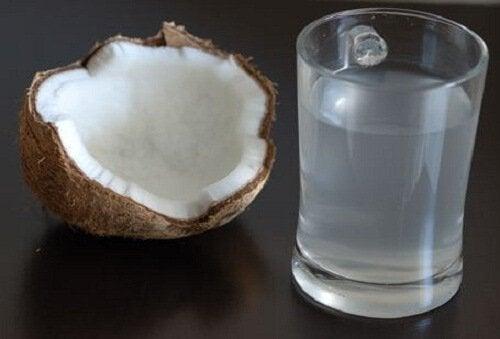 코코넛 워터의 건강 효능