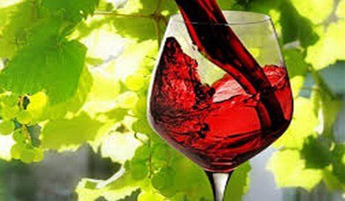한 시간의 운동과 같은 와인 한 잔의 효과